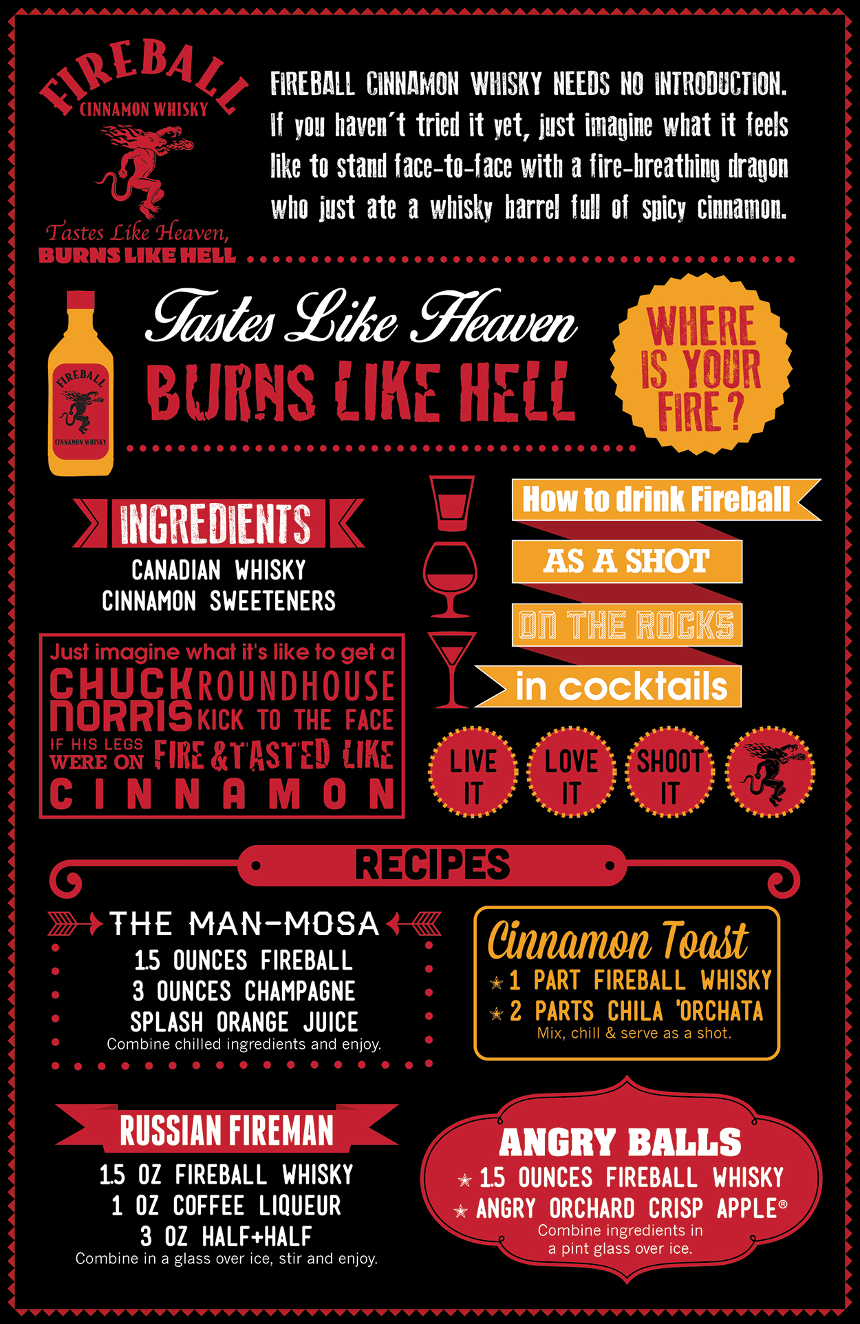 Fireball Cinnamon Whiskey Infographic by DreamBig Creative Minneapolis, MN